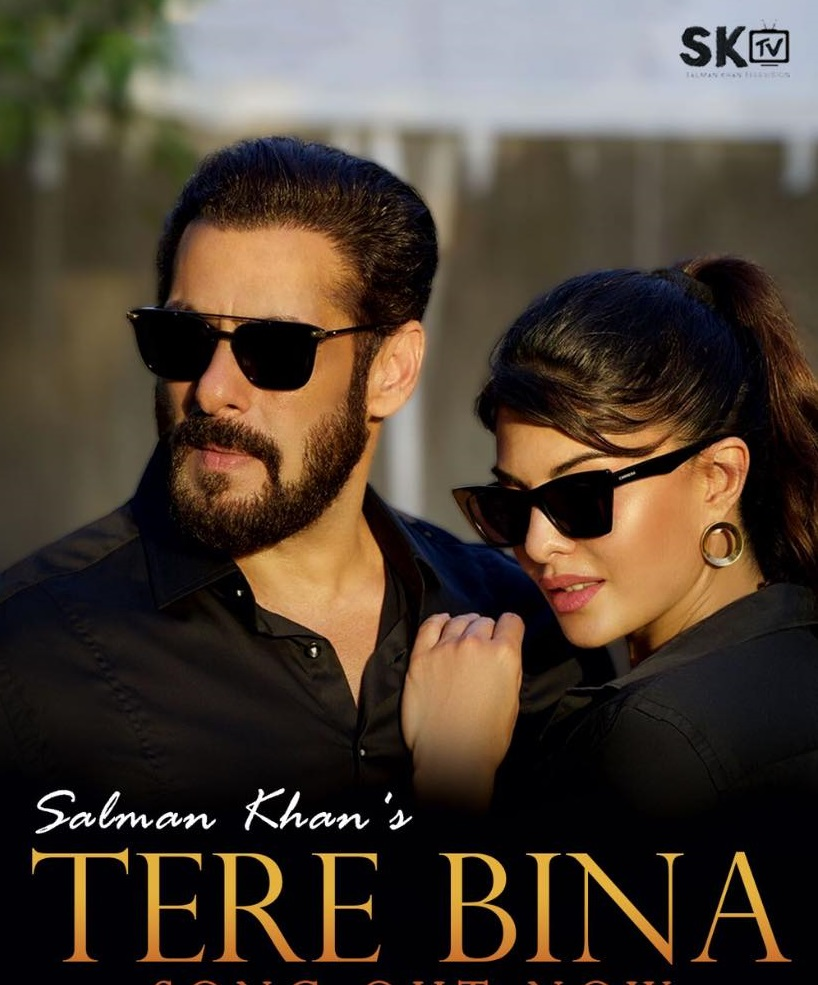 Tere Bina By Salman Khan 2020 HDRip 1080p Hindi Official Music Video 70MB