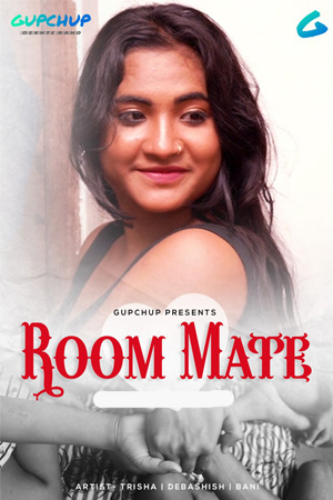 Room Mate 2020 Hindi Web Series 720p HDRip 300MB Download