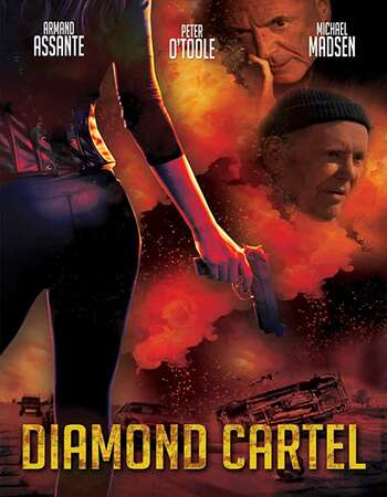 Diamond Cartel 2015 Dual Hindi 480p BRRip 300MB ESubs