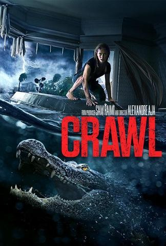 Crawl 2019 Dual Hindi ORG 480p BRRip 350MB ESubs