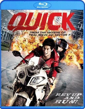 Quick 2011 Hindi Dual Audio 480p BRRip x264 300MB ESubs